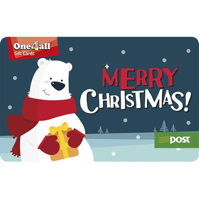 Christmas design Plastic Gift Card For Promotion
